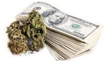 Marijuana summit